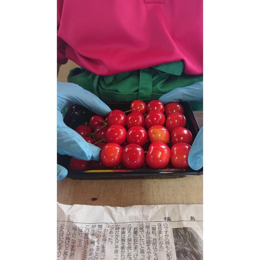 まるせい果樹園|さくらんぼ|紅秀峰|極上品|fukushimamarusei|05