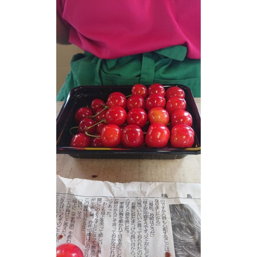 まるせい果樹園|さくらんぼ|紅秀峰|極上品|fukushimamarusei|06