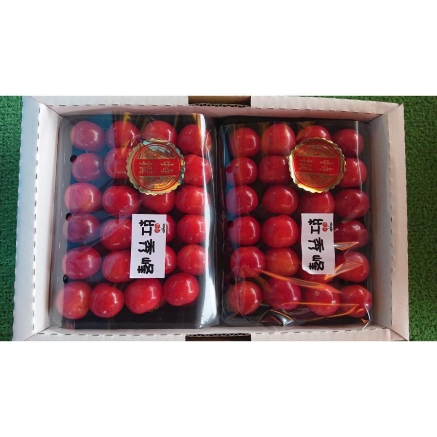 まるせい果樹園|さくらんぼ|紅秀峰|極上品|fukushimamarusei|08