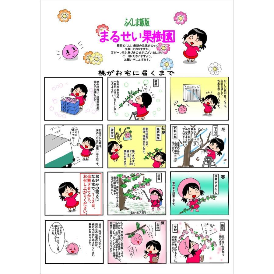 まるせい果樹園の桃 あかつき 中箱 ご贈答用 fukushimamarusei 02