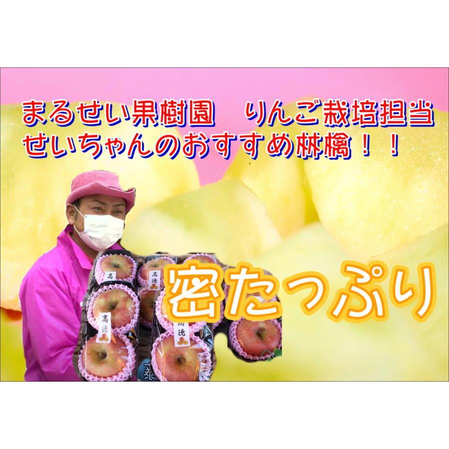 まるせい果樹園「高徳」送料込|りんご|リンゴ |fukushimamarusei
