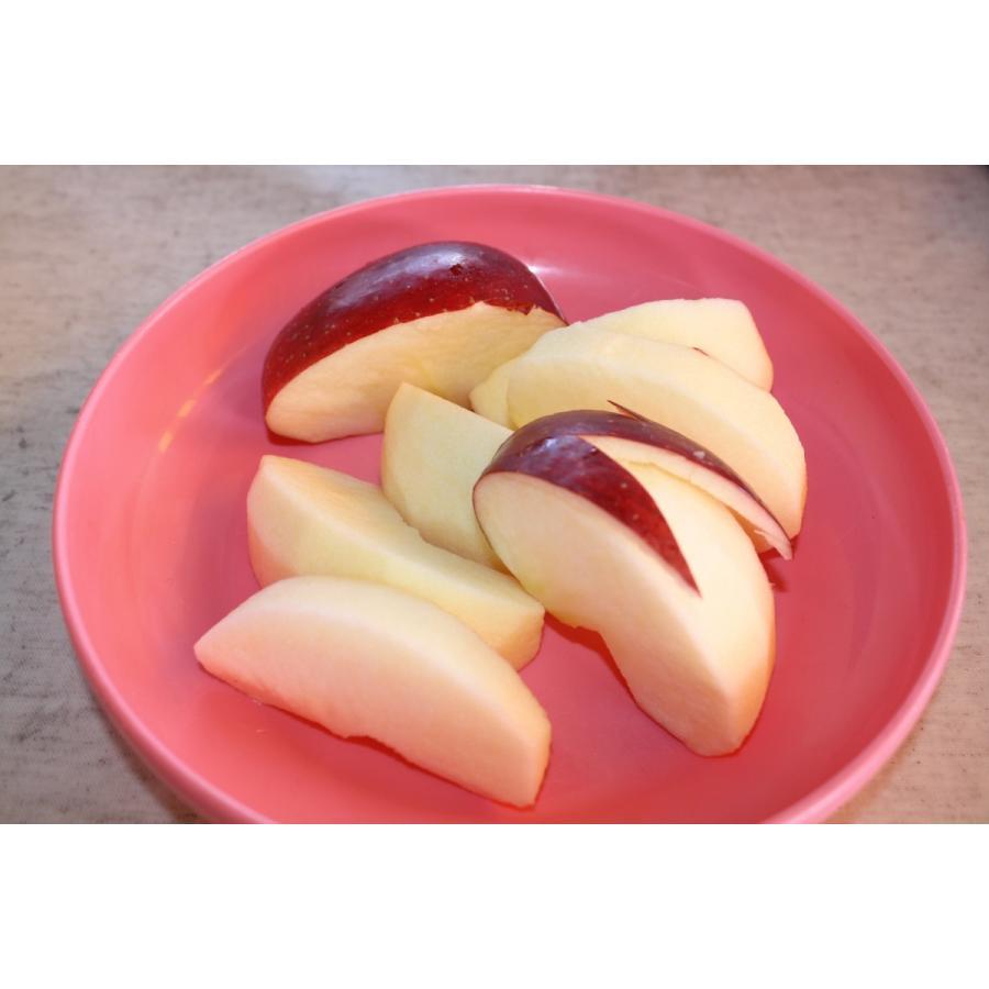 まるせい果樹園訳あり りんごシリーズ 送料込 りんご リンゴ  fukushimamarusei 03