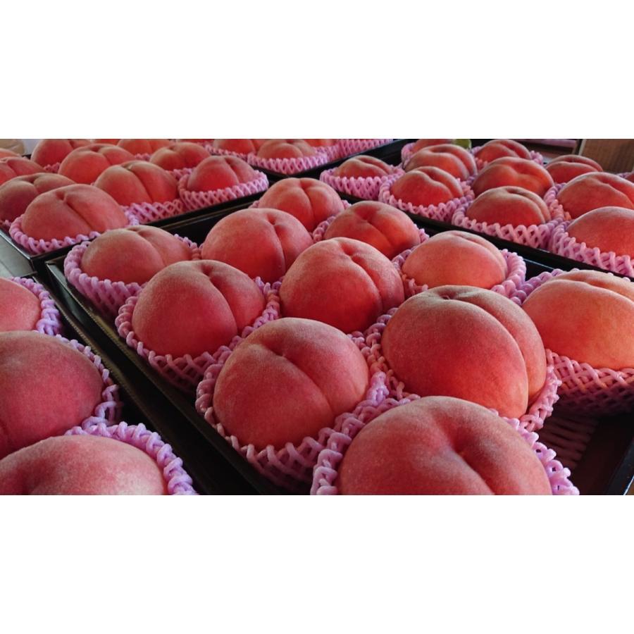 まるせい果樹園の桃 白鳳  ご贈答用 |fukushimamarusei