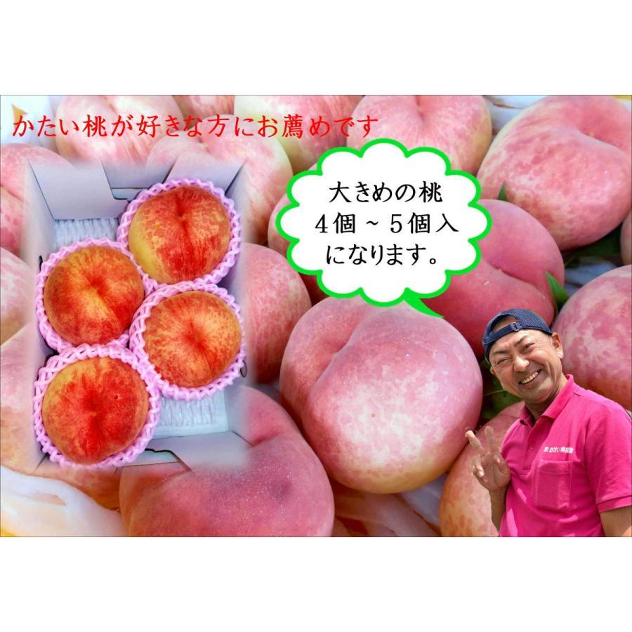 まるせい果樹園|桃|品種お任せ|晩成種|もも|モモ |fukushimamarusei
