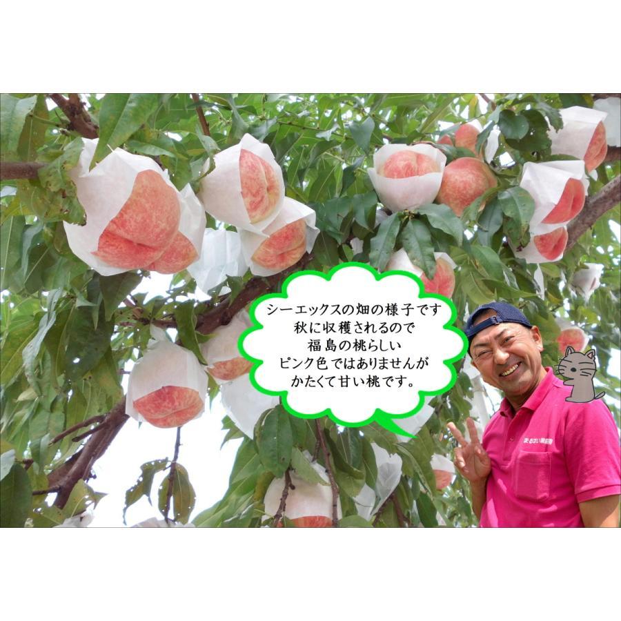 まるせい果樹園|桃|品種お任せ|晩成種|もも|モモ |fukushimamarusei|02