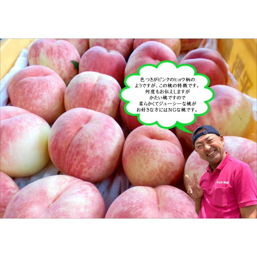 まるせい果樹園|桃|品種お任せ|晩成種|もも|モモ |fukushimamarusei|03