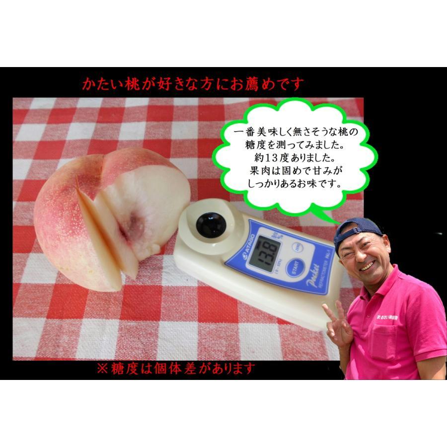 まるせい果樹園|桃|品種お任せ|晩成種|もも|モモ |fukushimamarusei|04