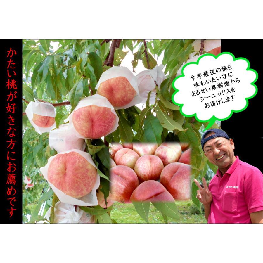 まるせい果樹園|桃|品種お任せ|晩成種|もも|モモ |fukushimamarusei|05