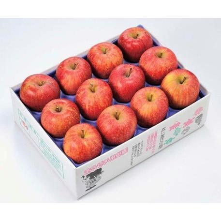 まるせい果樹園季節のりんごシリーズ 送料込 りんご リンゴ |fukushimamarusei