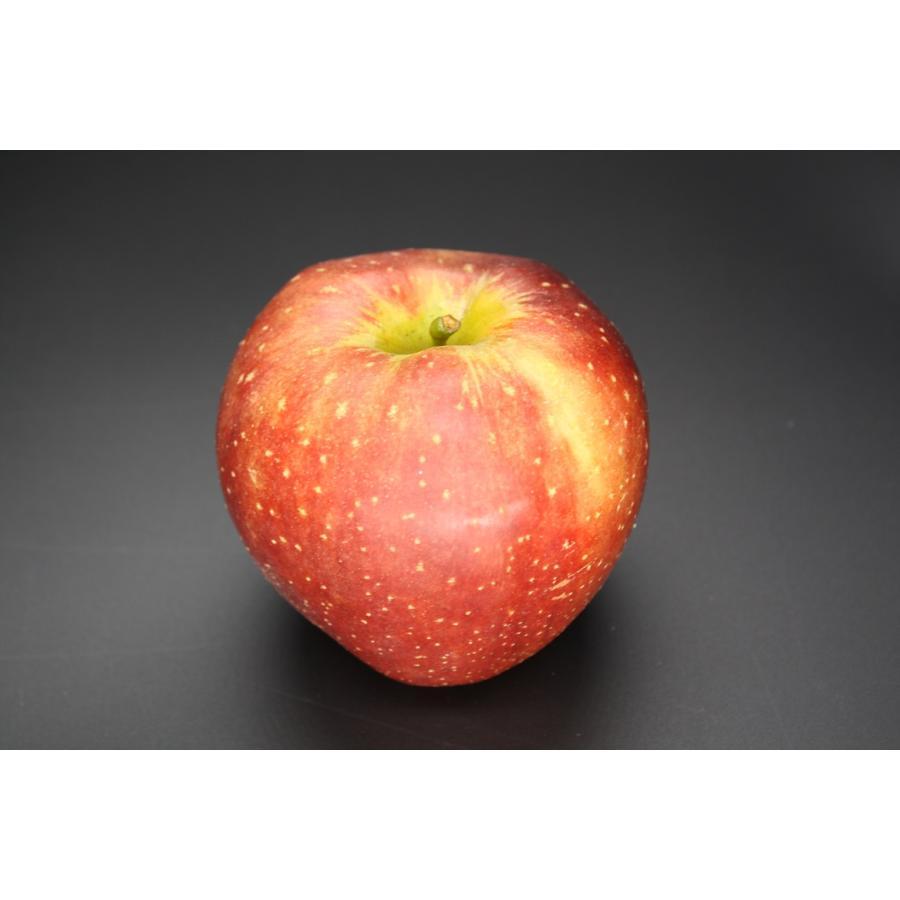 まるせい果樹園季節のりんごシリーズ 送料込 りんご リンゴ |fukushimamarusei|05
