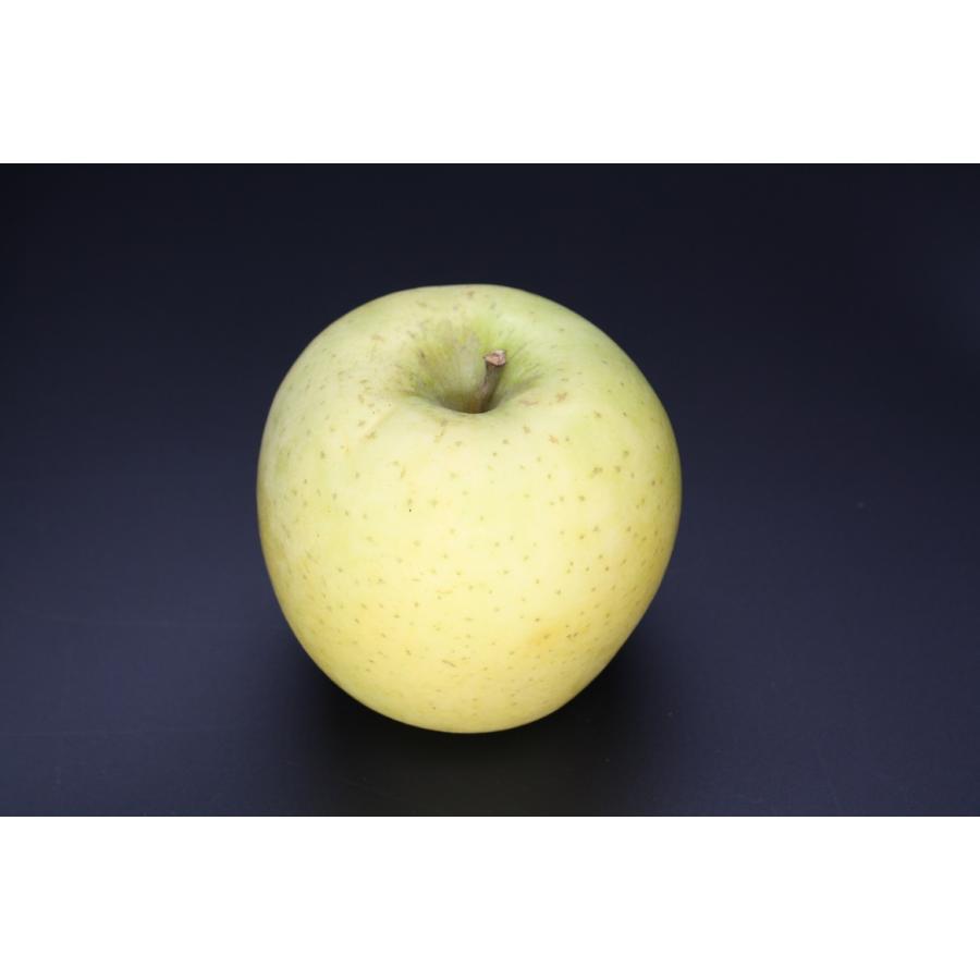 まるせい果樹園季節のりんごシリーズ 送料込 りんご リンゴ |fukushimamarusei|06