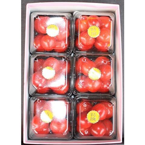 まるせい果樹園 さくらんぼ 佐藤錦 オリジナル化粧箱 fukushimamarusei