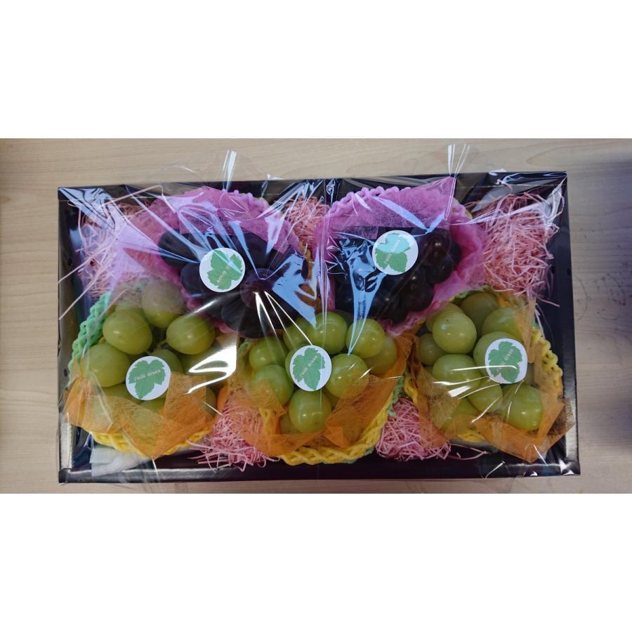 福島県産 まるせい果樹園 プチぶどうセット|fukushimamarusei