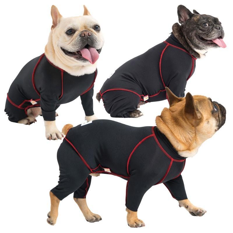 保護 犬 フレンチ ブルドッグ