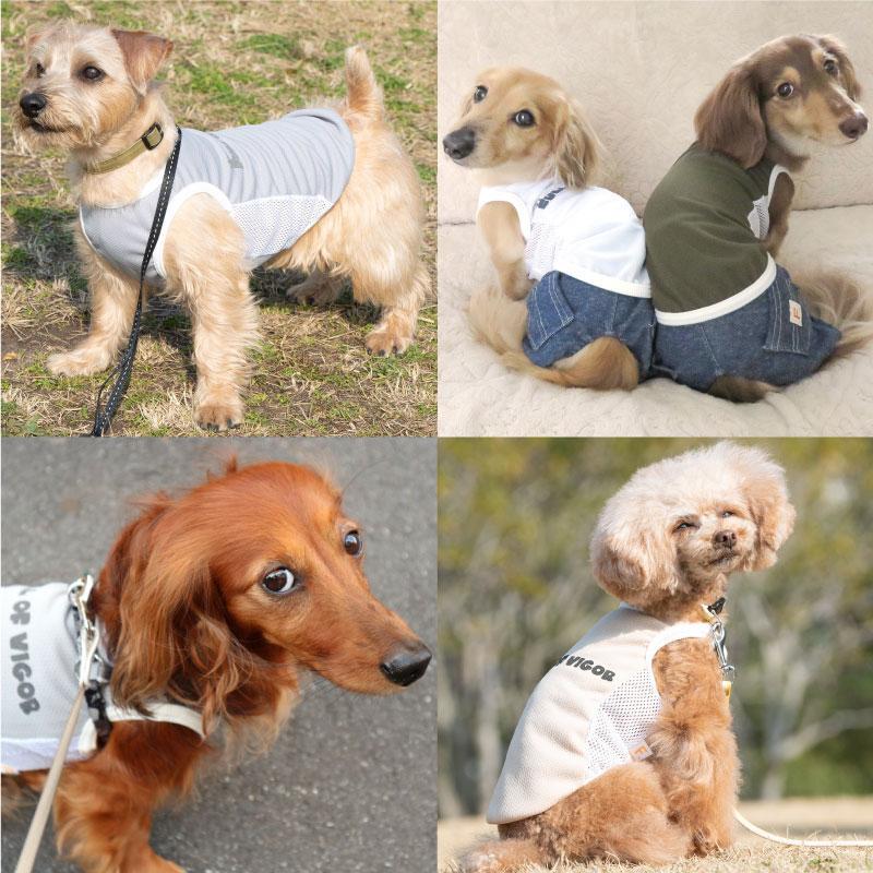 【2020春夏新作】反射ロゴ付き防蚊切り替えタンク(ダックス・小型犬用)【ネコポス値2】フルオブビガー 犬の服 洋服 ペット ドッグ ウェア fullofvigor-yshop 04