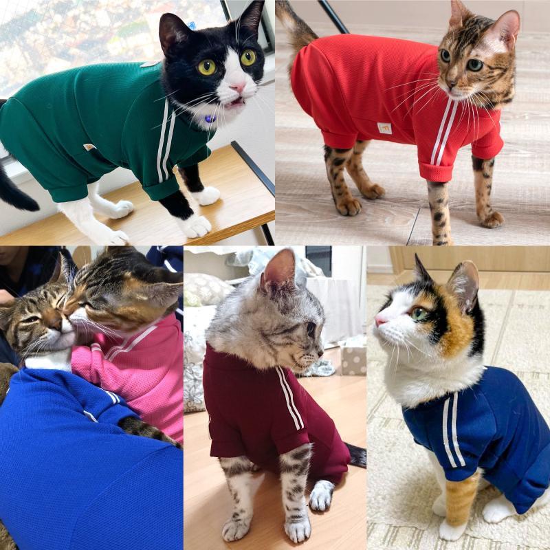 【2020春夏新作】【猫専用】猫用体操服ジャージつなぎ【ネコポス値2】フルオブビガー 猫の服 洋服 ペット キャット ウェア|fullofvigor-yshop|06
