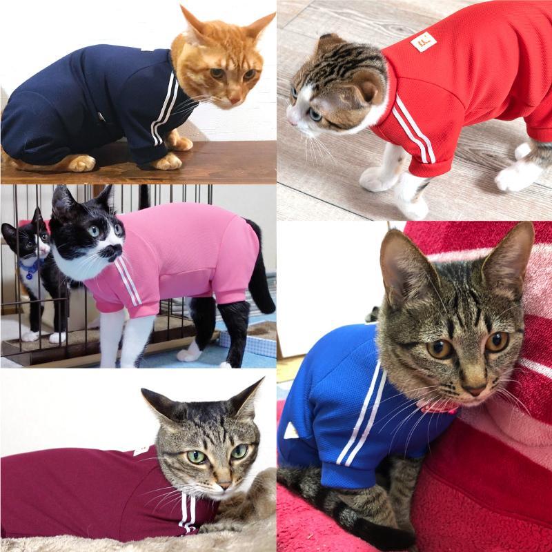 【2020春夏新作】【猫専用】猫用体操服ジャージつなぎ【ネコポス値2】フルオブビガー 猫の服 洋服 ペット キャット ウェア|fullofvigor-yshop|07