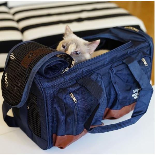 犬 キャリーバッグ マンダリンブラザーズ ビックポケットキャリー リニューアル Big Pocket Carry Bag 小型犬 MANDARINE BROTHERS おすすめ funnish 10