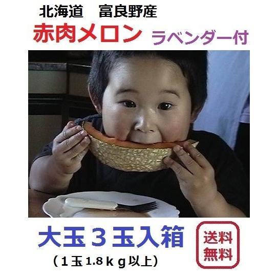 富良野産 赤肉メロン 大玉3玉 ラベンダー付き 【お中元 ご贈答に最適!】|furano-kanofarm