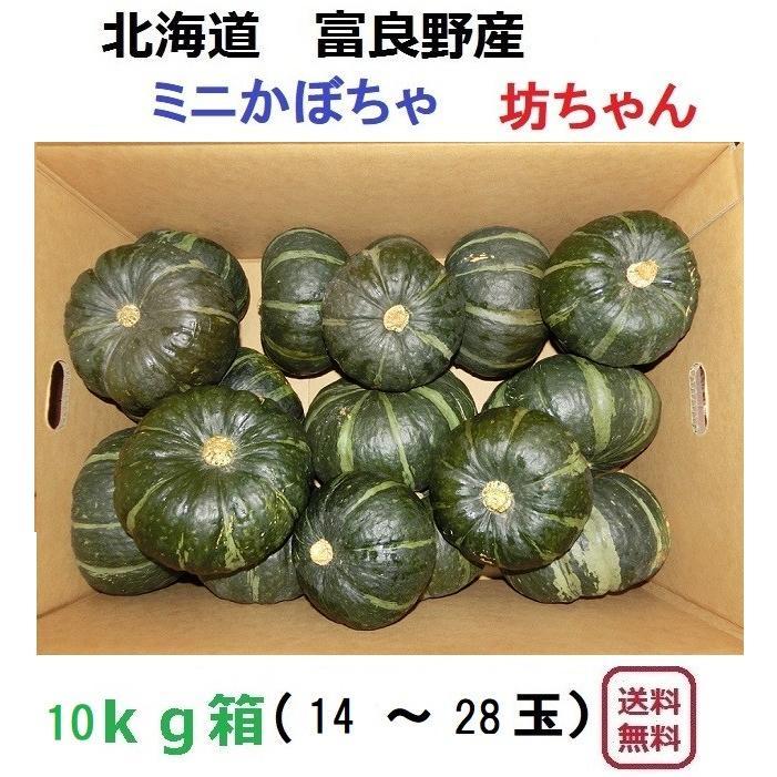 富良野産 坊ちゃん10kg(14〜30玉入り)【無農薬】|furano-kanofarm