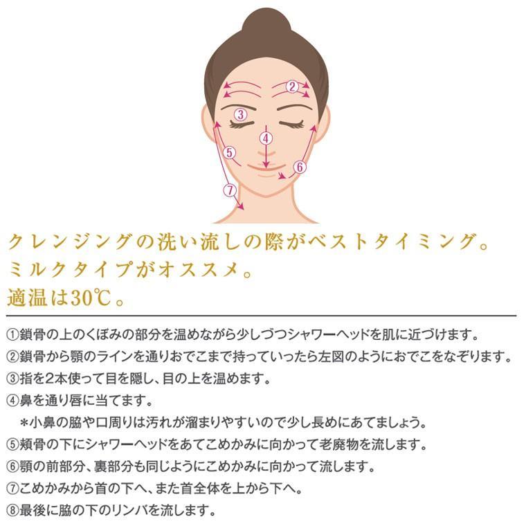 【送料無料】マイクロバブルシャワーヘッド「ボリーナワイドプラス(Bollina)」シルバー【日本製 シャワーヘッド マイクロナノバブル 節水シャワーヘッド】|furo|11