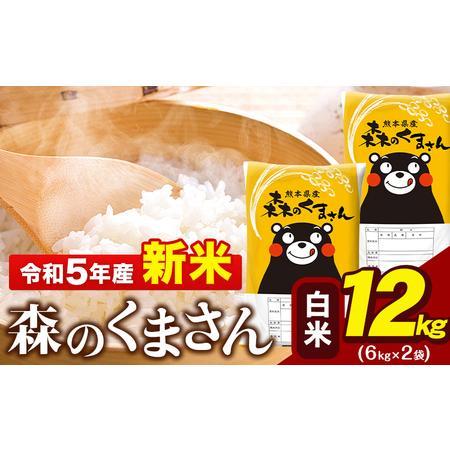 ふるさと納税 令和3年産 新米 森のくまさん13kg 6.5kg×2袋 白米 熊本県産 単一原料米 森くま《出荷時期をお選びください》 熊本県玉東町|furunavi