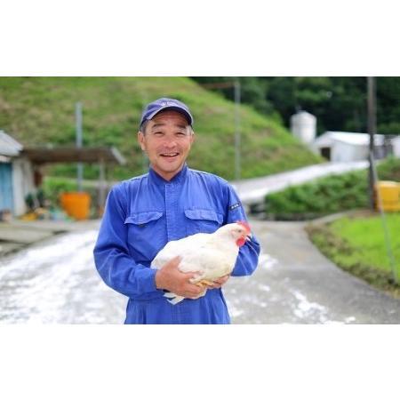 ふるさと納税 ★銘柄鶏四万十鶏★ しまから1kg 超簡単揚げるだけ♪ Adf-33 高知県四万十町|furunavi|04