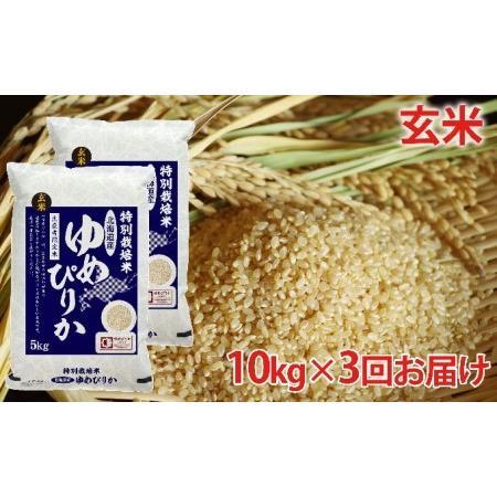 ふるさと納税 玄米 北海道赤平産ゆめぴりか特別栽培米10kg×3回お届け 北海道赤平市