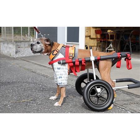 ふるさと納税 大型犬用二輪車椅子(背丈50·75cm 体重40キロ以下) 岐阜県池田町
