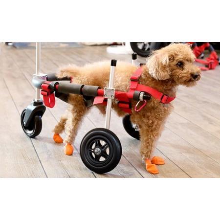 ふるさと納税 小型犬用三輪車椅子(背丈23·35cm 体重8キロ以下) 岐阜県池田町