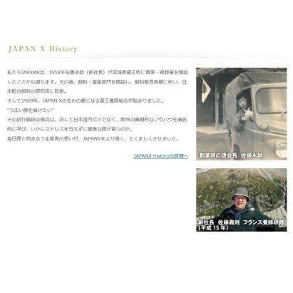 ふるさと納税 JAPAN X豚小間1.5kg&家庭用牛タン(塩味)600g/計2.1kg【訳あり】 宮城県蔵王町|furunavi|03