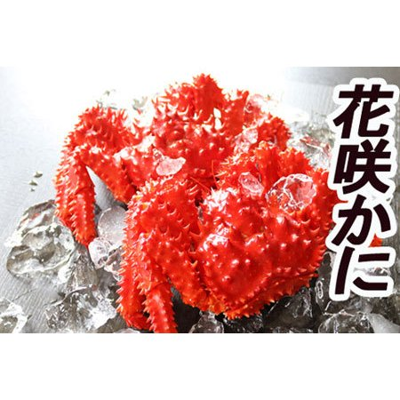 ふるさと納税 【北海道根室産】花咲かに400·600g×10尾 D-36007 北海道根室市