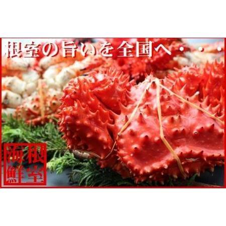 ふるさと納税 花咲がに1.8·2.0kg前後×1尾 D-57014 北海道根室市