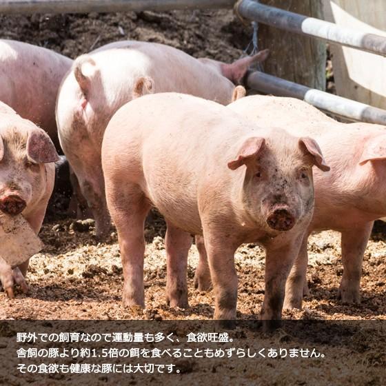 里の放牧豚 Aセット|furuyanouen|04