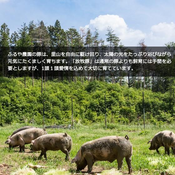 里の放牧豚 Aセット|furuyanouen|05