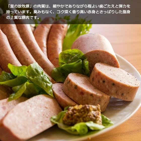里の放牧豚 Aセット|furuyanouen|06