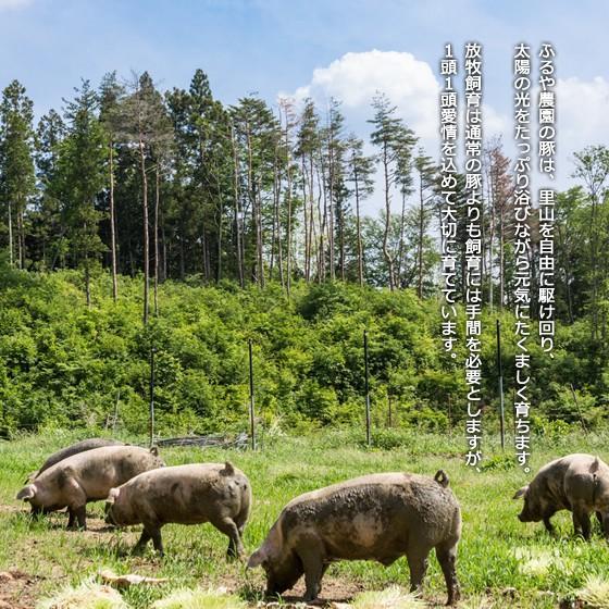 里の放牧豚 Bセット|furuyanouen|05