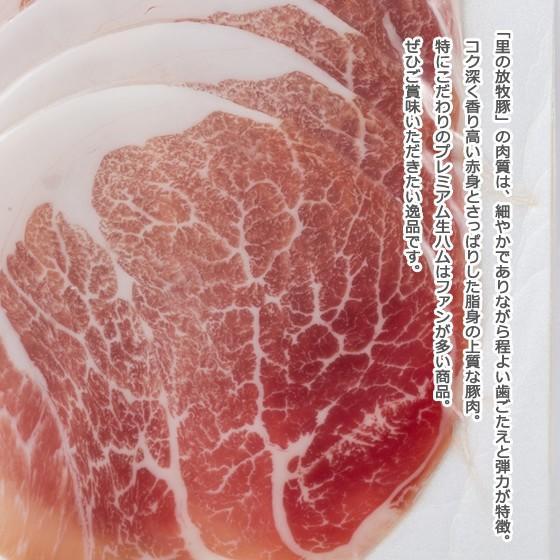 里の放牧豚 Bセット|furuyanouen|06