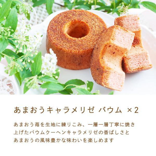 苺のスイーツギフトセットMサイズ 母の日 2021(ミルクバウム サンドクッキー クランチチョコ) あまおう スイーツ ギフト  宅急便発送 内祝 Agift|fuubian|04