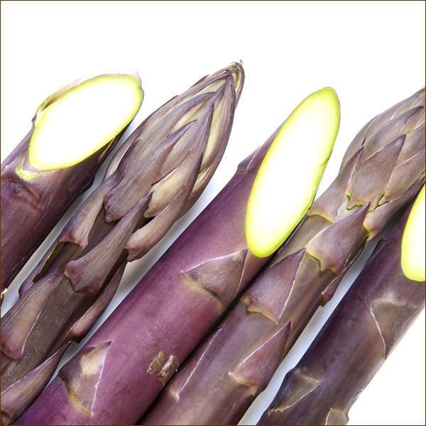 【予約】北海道産 アスパラガス パープルアスパラ 600g (L-2Lサイズ) アスパラ 紫 パープル ギフト 野菜 食品 北海道グルメ 送料無料 お取り寄せ g-hokkaido 05