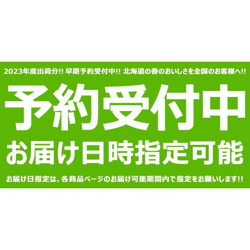 【予約】北海道産 アスパラガス パープルアスパラ 600g (L-2Lサイズ) アスパラ 紫 パープル ギフト 野菜 食品 北海道グルメ 送料無料 お取り寄せ g-hokkaido 08