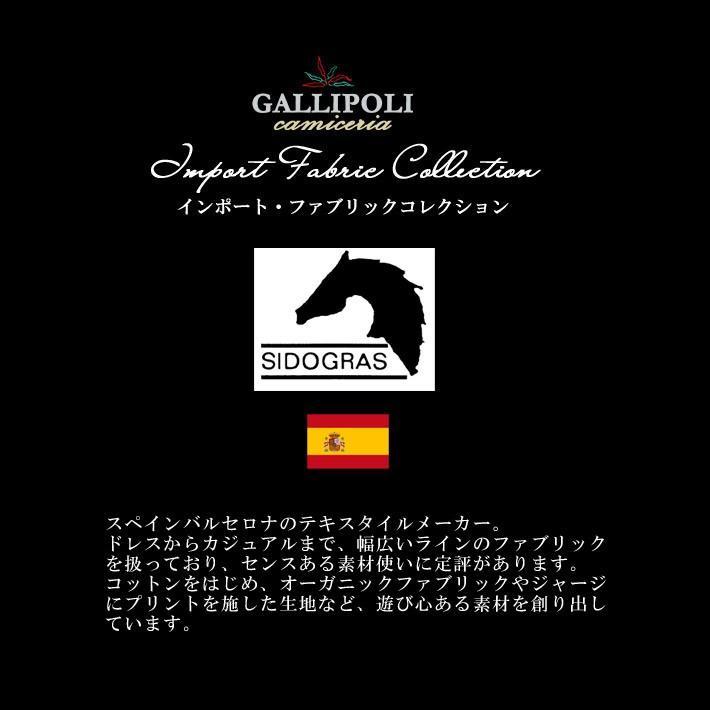 75b79c01a7 ... 日本製 シャツ チェック 長袖 カジュアルシャツ スペイン生地 280668 GALLIPOLI camiceria(ガリポリカミチェリア  ...