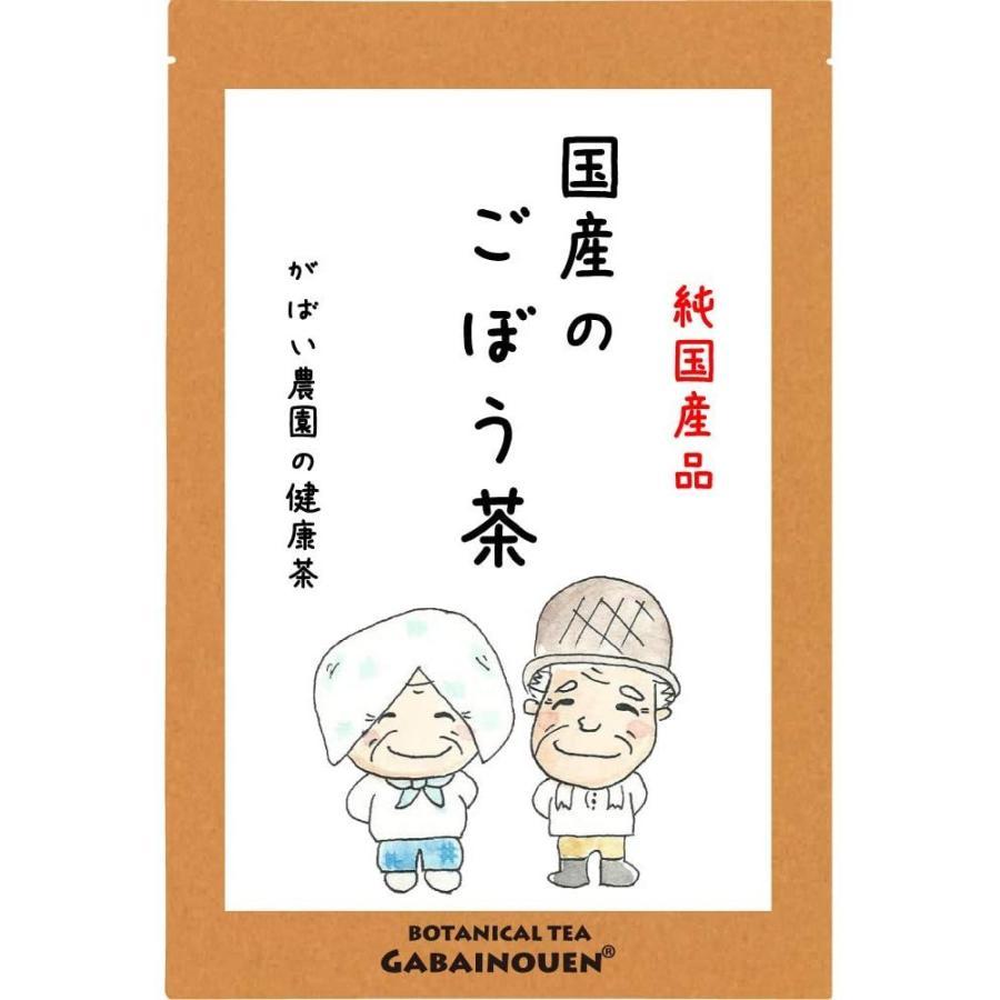 ごぼう茶 2g×50包 国産(宮崎県・その他西日本) 残留農薬・放射能検査済 gabainouen