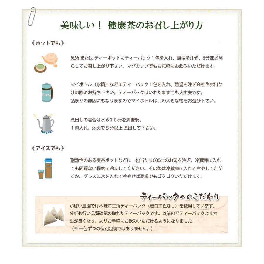 ごぼう茶 2g×50包 国産(宮崎県・その他西日本) 残留農薬・放射能検査済 gabainouen 04