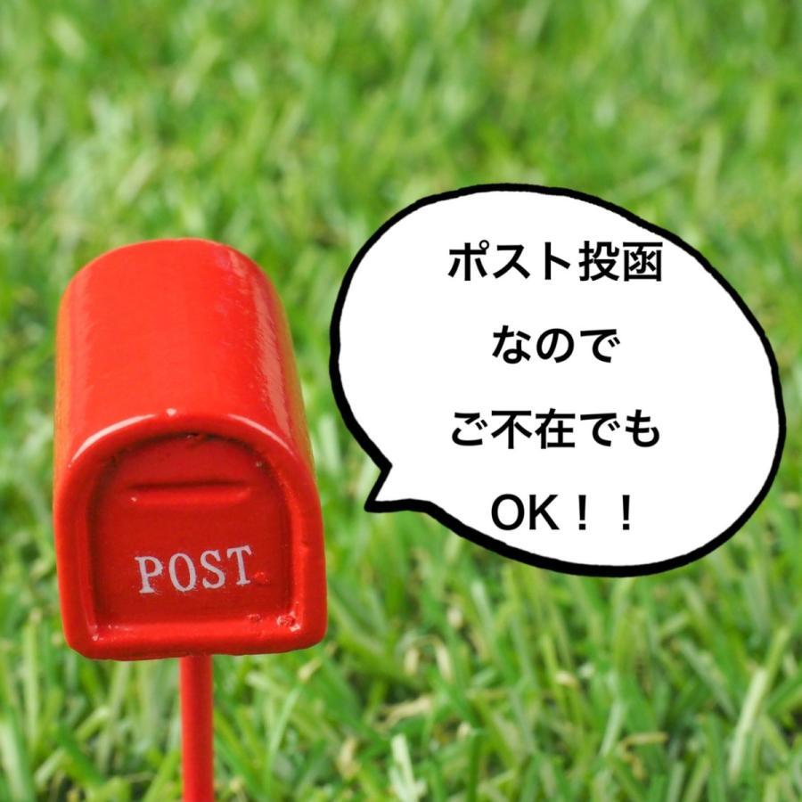 ラシャスリップス 正規品 人気色の#325ペールピンク系 最高級のリッププランパー lusciouslips gainfiled 03