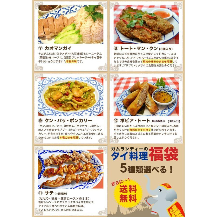 【送料無料】選べる5種類!ガムランディーのタイ料理福袋|gamlangdii-store|04