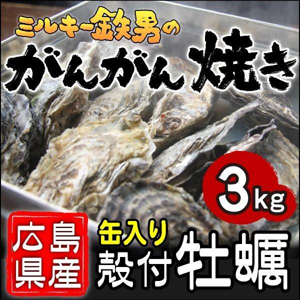 /送料無料!/ミルキー鉄男のがんがん焼き 広島県産殻付きかき 缶入り3kg gangan
