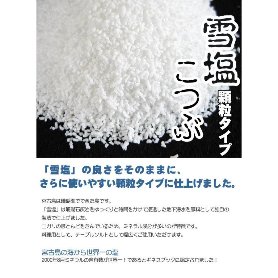 雪塩こつぶ(顆粒タイプ)卓上用55g|ganju|03