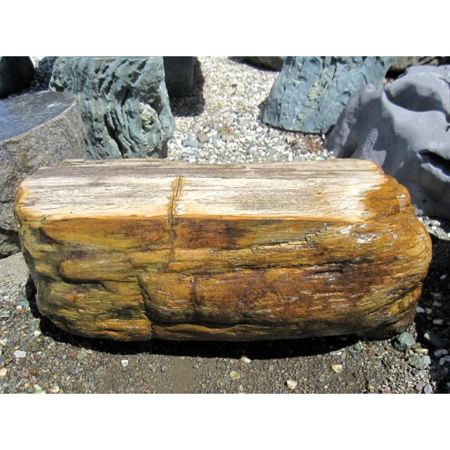 木化石 珪化木 庭石 景石