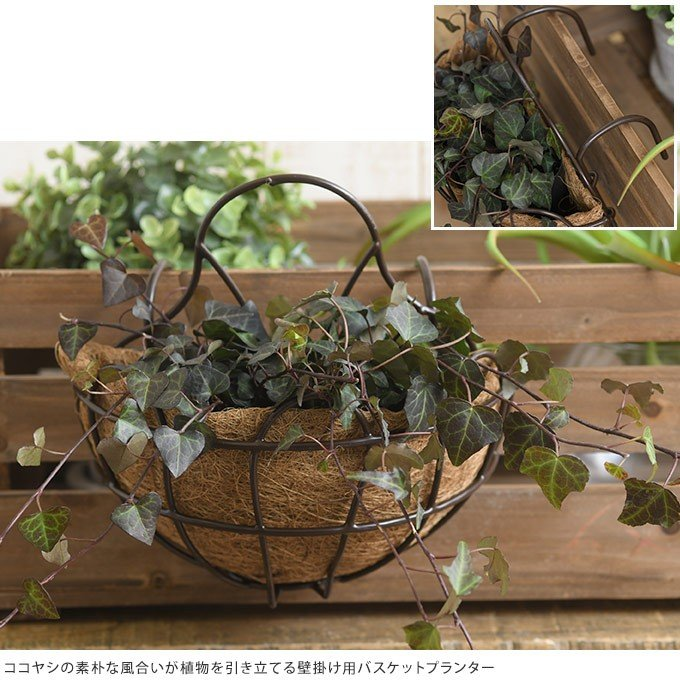 アイアン 壁掛けプランター ココヤシマット付き 幅25cm ブラック おしゃれ 洋風 ウォールプランター gardenyouhin 02